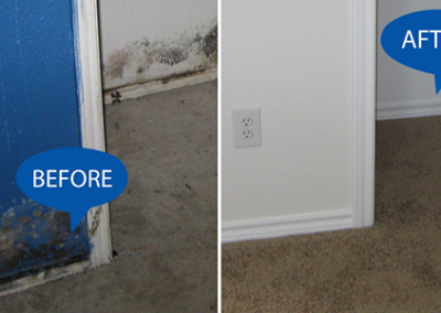 mold-removal-before-and-after-web